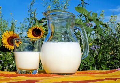 Différence entre le lait et le lait de soja